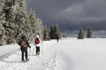 Petits groupes de randonneurs en raquettes en hiver