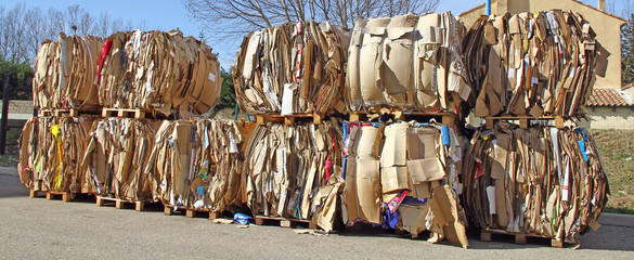 Cartons à recycler