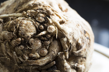 Celeriac Close Up