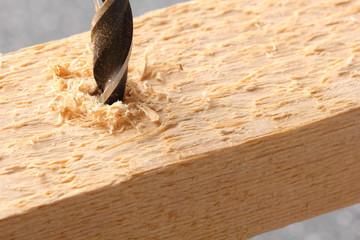 Holzbohrer