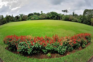 Sri Lanka - giardino botanico di Kandy