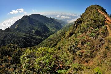 Sri Lanka - Horton Plains World end panorama