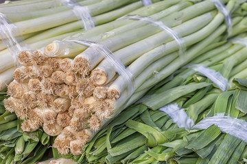 Closeup of a fresh bunch of leek at the farmers market, Allium a