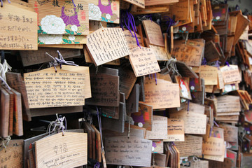 Ema plaques at japanese shrine