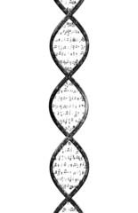 Musical DNA