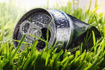 aluminum cans on a green grass