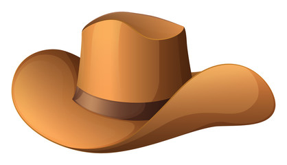 A brown hat