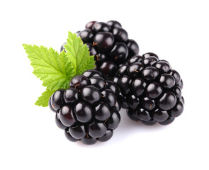 Blackberry with leaf