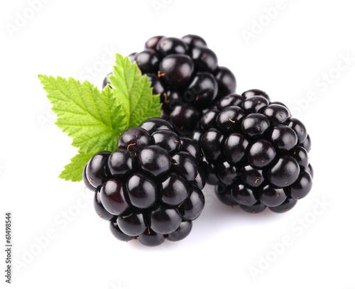 Blackberry with leaf - 61498544