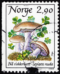 Postage stamp Norway 1988 Blue Stalk Mushroom