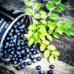 Fresh Blueberry with green leaves in a metal bucket on wooden ba