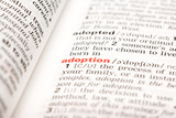 Adoption Word Definition In Dictionary