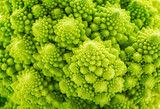 Beautiful closeup background of Romanesco spiral broccoli
