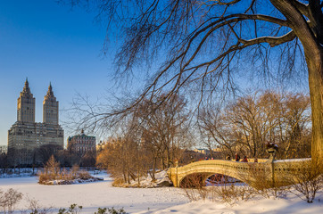 Central park bow bridge