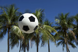 Football Soccer Ball Brazilian Palm Trees