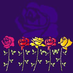 Rosenblüten als Hintergrund