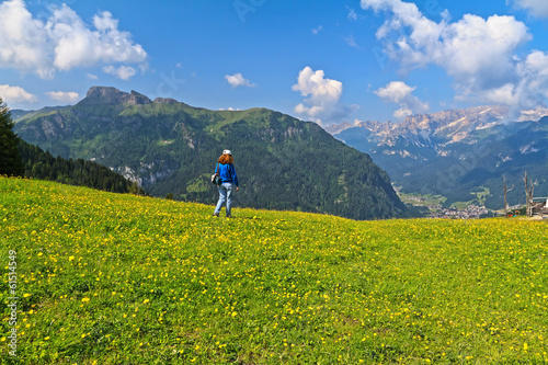 Dolomites - hiker on flowered meadow