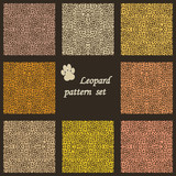 set of vector leopard  backgrounds