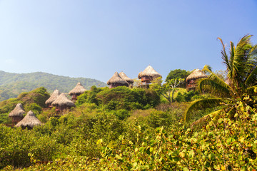 Rustic Huts in the Jungle