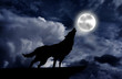 Wolf howling at the full moon - 61523126