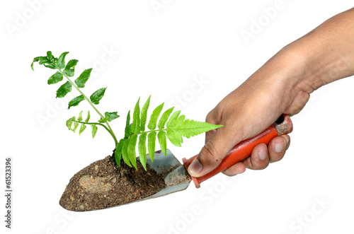 Hand grip a gardening trowel and plant on a isolate.