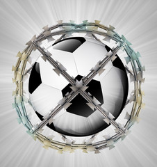protected ball in barbed sphere fence
