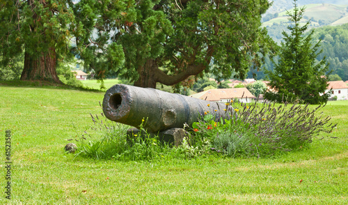 Old castle cannon on green grass