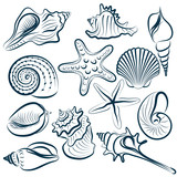 Seashell collection - vector silhouette illustration