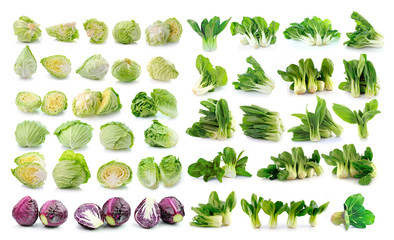 Bok choy (chinese cabbage) , cabbage  isolated on white backgrou