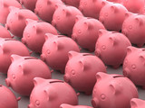 Pig money boxes