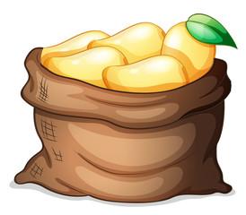 A sack of ripe mangoes