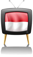 The flag of Monaco inside the TV