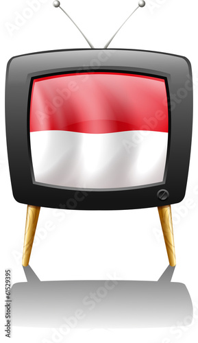 The flag of Monaco inside the TV