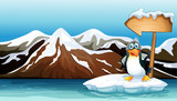 Fototapety A penguin above the iceberg with an arrowboard