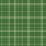 Seamless pattern Scottish green cage