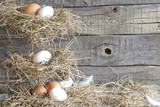 Abstract easter organic eggs on vintage boards in chicken coop