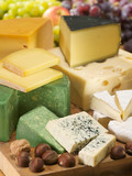 Set with different kinds of cheeses. Dairy collection.