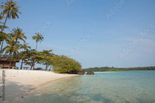 thailand beach, beautiful Thailand beach with coconut palm tree