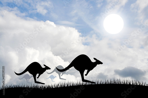 Kangaroos jumping over the sun