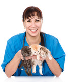 vet holds three kittens. isolated on white background