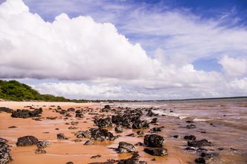 Brazil beach, wild