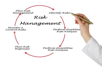 Plan Risk Management