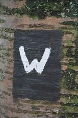 Symbol Wanderweg an einem Baum