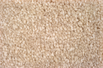 Close view of plush tan carpeting