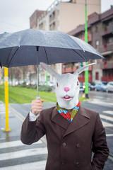 young stylish man rabbit mask