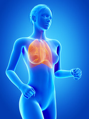 medical 3d illustration - jogging woman - visible lung