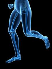 medical 3d illustration - jogging woman - visible leg bones