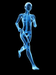 medical 3d illustration - female jogger - visible bones