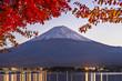 Fuji Mountain in the Autumn