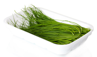 beautiful green onion chives in package isolated on white